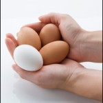 Are Your Store's Eggs Refrigerated?